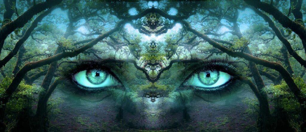 Il radicamento interiore delinea il cammino